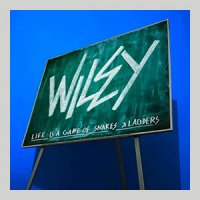 wiley-snakes-and-ladders-review