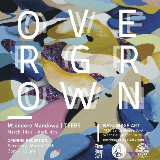 Overgrown: Teebs' showing at the New Image Gallery
