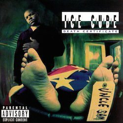 ice_cube-death_certificate_album_cover